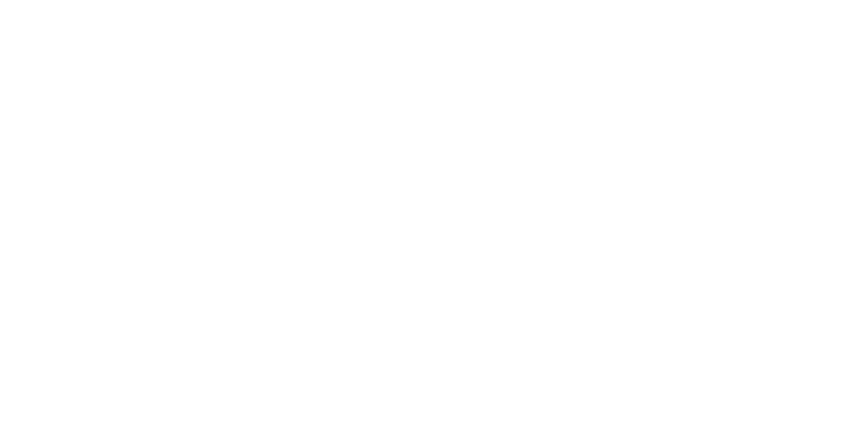 Bas van Disseldorp Multimedia Producties